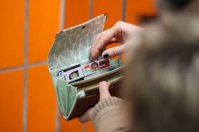 Little Ruby Geldbörse Hansedelli mint Innenansicht gefülltes Portemonnaie nähen Geldbeutel Schnittmuster orange