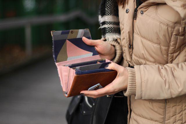 Little Ruby Geldbörse Hansedelli rosa geometrisches Muster Innen Portemonnaie nähen Geldbeutel Schnittmuster