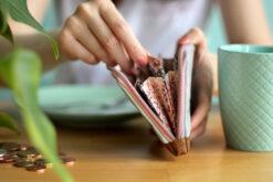 Detail Portemonnaie öffnen Reißverschlussenden einfassen rosa kupfer Geldbörse nähen Hansedelli
