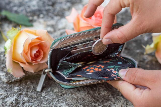 Geldbörse Mini Mynta Hansedelli Innenaufteilung Mini Portemonnaie mit umlaufendem Reißverschluss nähen